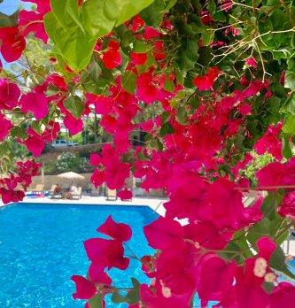 piscina pinar 4 (2)